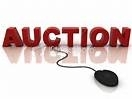 Auction Websites